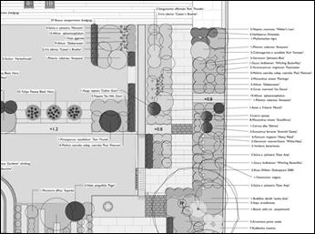 Planting Plan Image 1