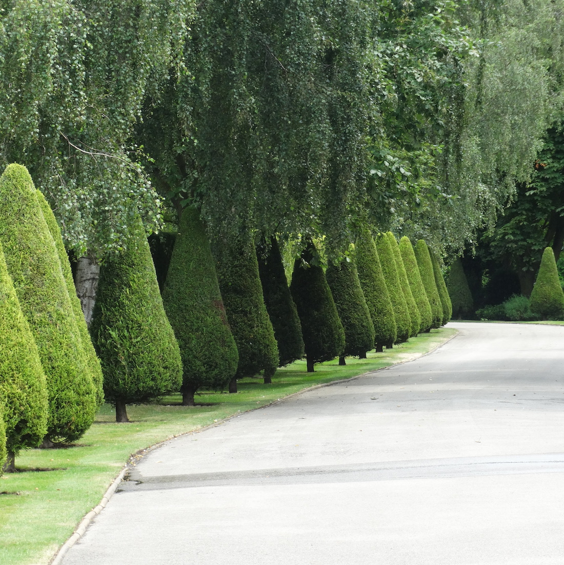 Country Estate Soft Landscaping Driveway Cambridgeshire